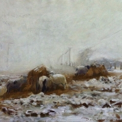 DanielYeomans-Sheep-Feeding-in-the-Snow